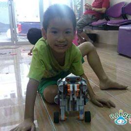 king Lego Robot show