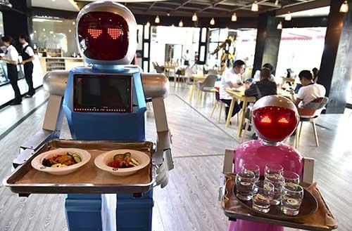 robot tray service web