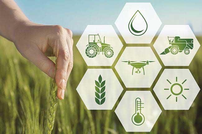 การใช้เทคโนโลยี 5g IOT sensor ช่วยในการทำการเกษตร